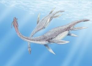 1024px-Plesiosaurus_3DB