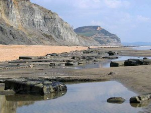 Low_tide_at_Charmouth_beach_-_geograph.org.uk_-_394624